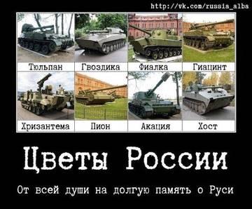 http://s3.uploads.ru/t/xfYn1.jpg