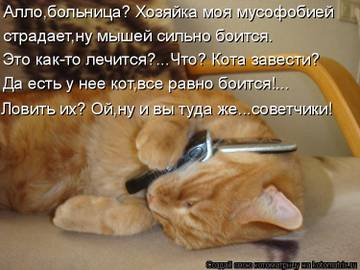 http://s3.uploads.ru/t/xfaoz.jpg