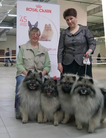 http://s3.uploads.ru/t/xrsiZ.jpg
