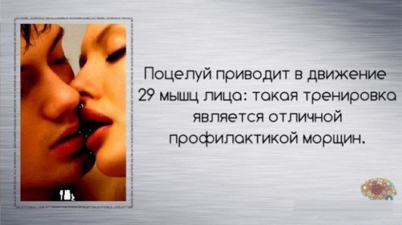 http://s3.uploads.ru/t/yG3Hi.jpg