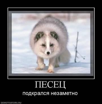 http://s3.uploads.ru/t/yUGKl.jpg
