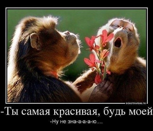 http://s3.uploads.ru/t/yg0Vi.jpg