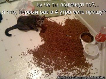 http://s3.uploads.ru/t/ywnLo.jpg