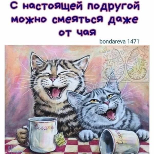 http://s3.uploads.ru/t/zHyFl.jpg