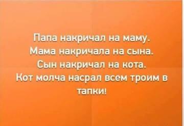http://s3.uploads.ru/t/zQDyV.jpg