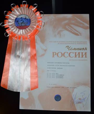 http://s3.uploads.ru/t/zQM9T.jpg