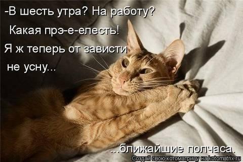 http://s3.uploads.ru/t/zacDb.jpg