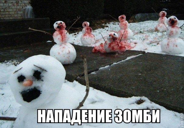 http://s3.uploads.ru/t97Li.jpg