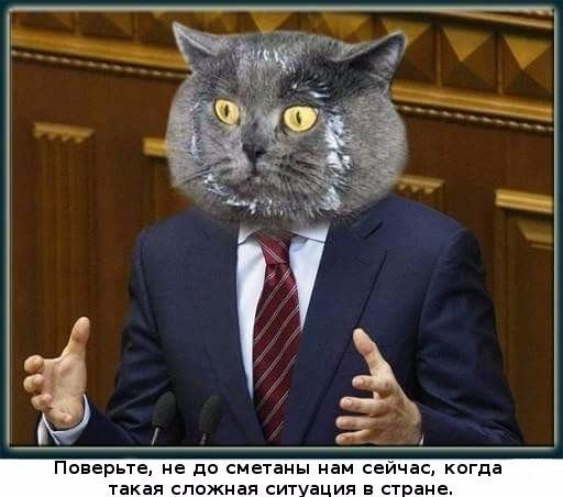 http://s3.uploads.ru/tRbUj.jpg