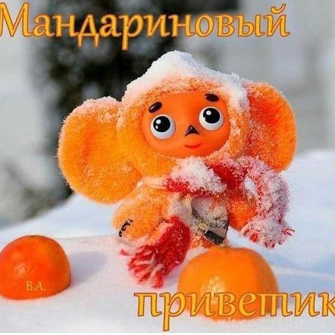 http://s3.uploads.ru/tbgkJ.jpg