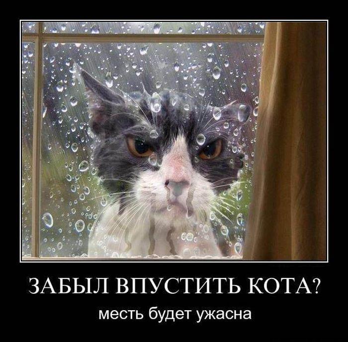 http://s3.uploads.ru/uPq4N.jpg