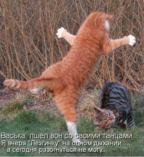 http://s3.uploads.ru/ucjHa.jpg