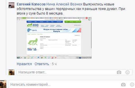 http://s3.uploads.ru/udy4D.png