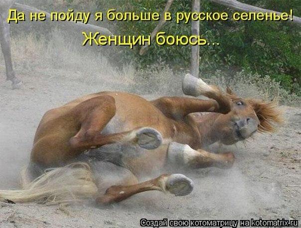 http://s3.uploads.ru/v5VCd.jpg