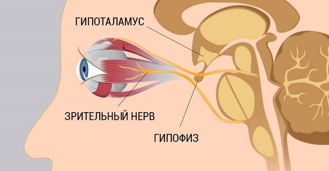http://s3.uploads.ru/vANc3.jpg