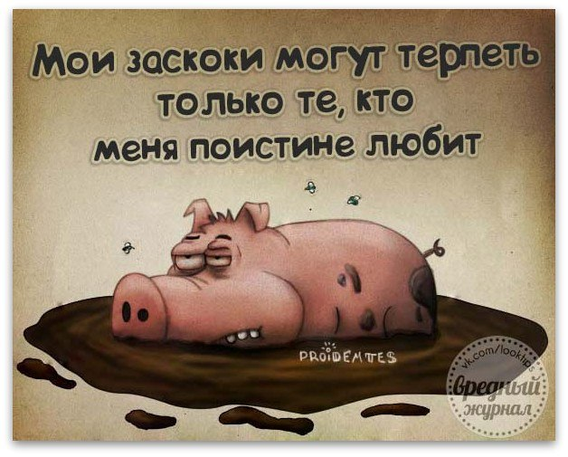 http://s3.uploads.ru/vHKx1.jpg