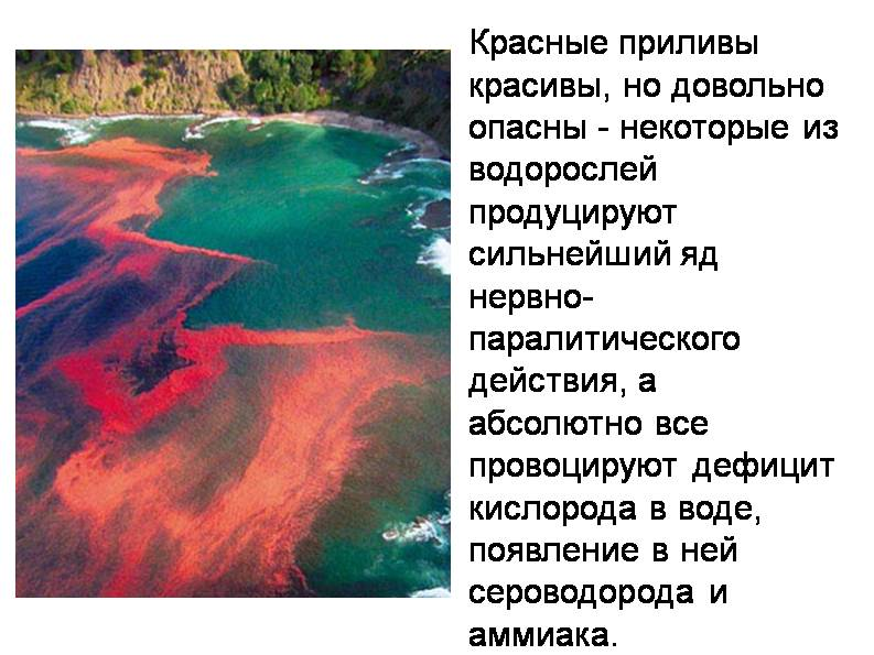 http://s3.uploads.ru/vxVO7.jpg