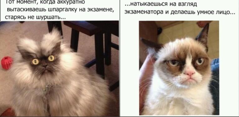 http://s3.uploads.ru/vzCUI.jpg