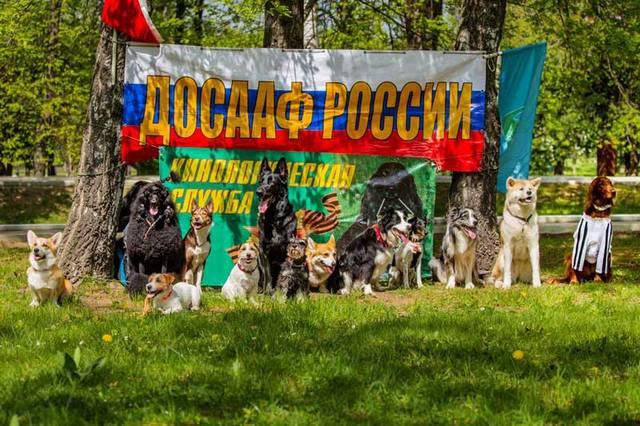http://s3.uploads.ru/xUQ08.jpg
