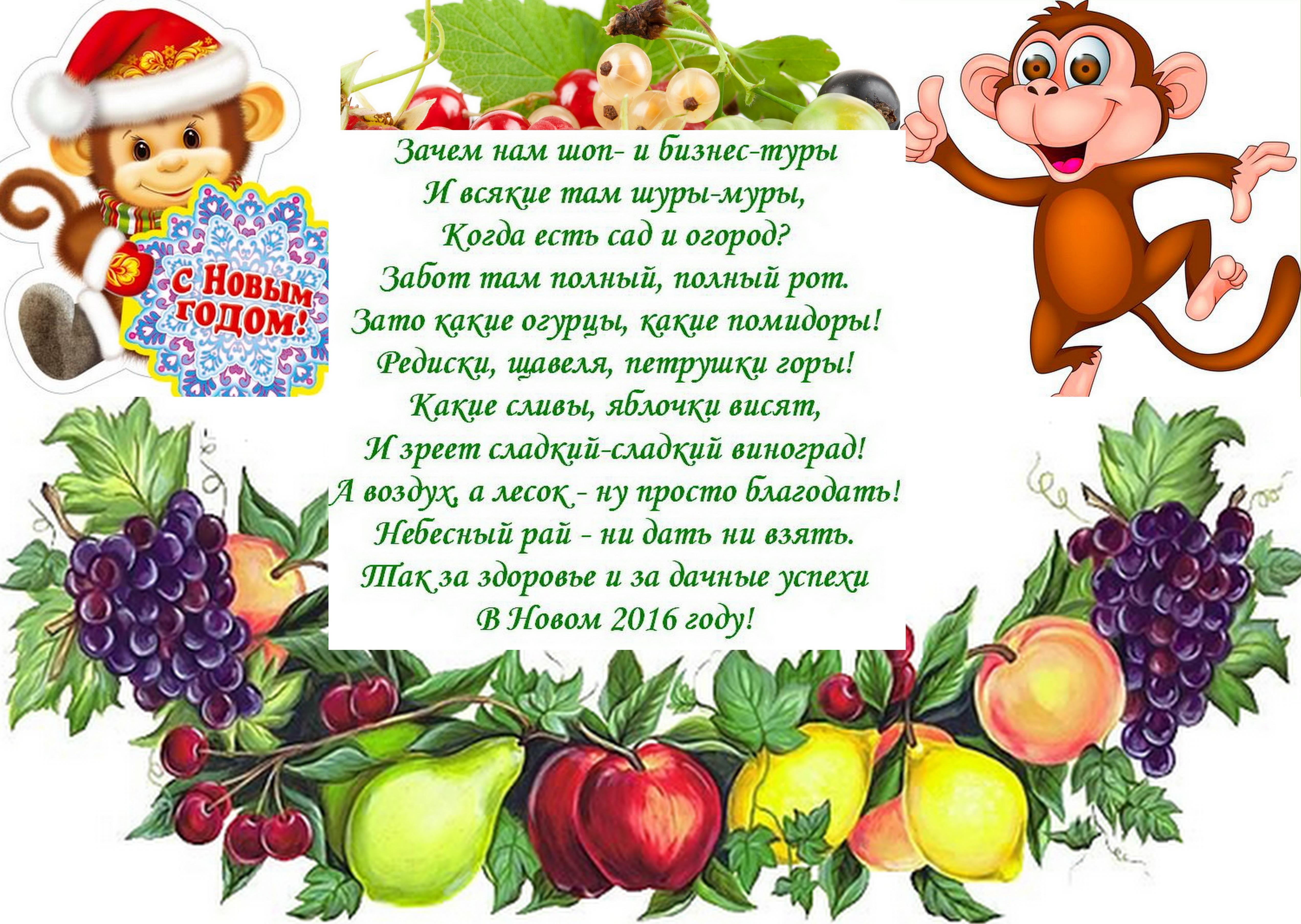 http://s3.uploads.ru/xabHS.jpg