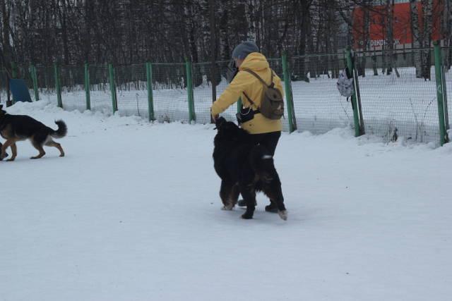 http://s3.uploads.ru/xlqr1.jpg