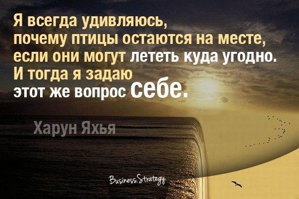 http://s3.uploads.ru/yROHG.jpg
