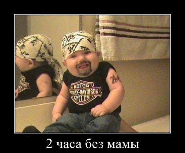 http://s3.uploads.ru/yVD2W.jpg