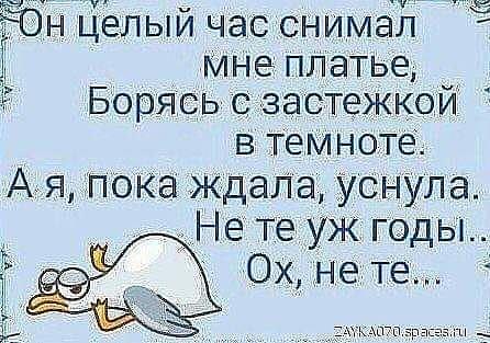 http://s3.uploads.ru/yYzZX.jpg