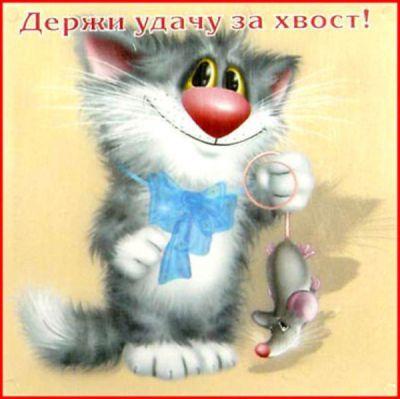 http://s3.uploads.ru/ygQYN.jpg