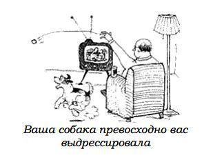 http://s3.uploads.ru/zkmMA.jpg