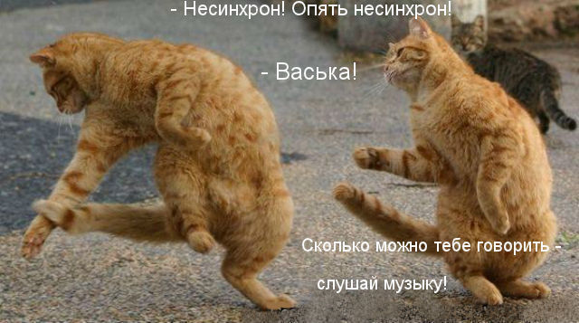 http://s3.uploads.ru/BuhsF.jpg