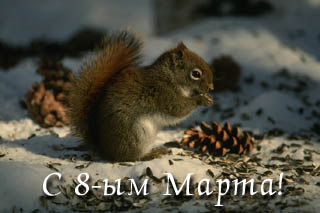 http://s3.uploads.ru/HAqCL.jpg