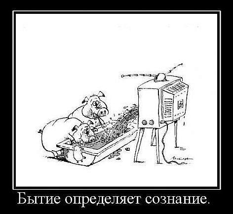 http://s3.uploads.ru/I63uN.jpg