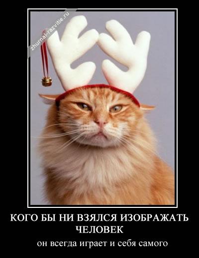 http://s3.uploads.ru/LB9Fw.jpg