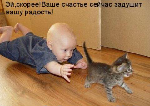http://s3.uploads.ru/McXBZ.jpg