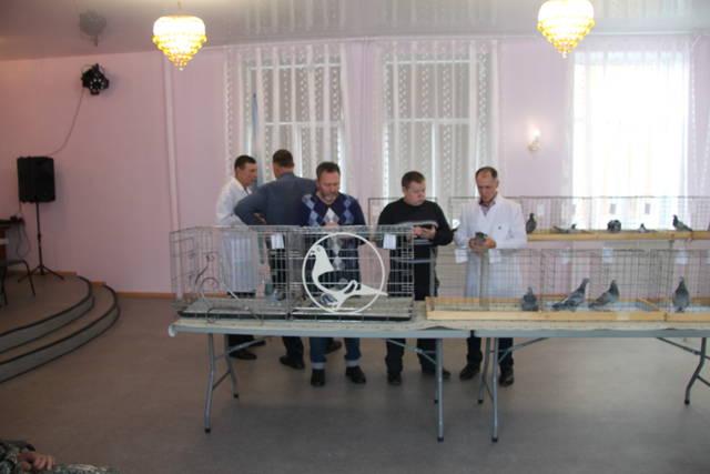 http://s3.uploads.ru/Ubsy3.jpg