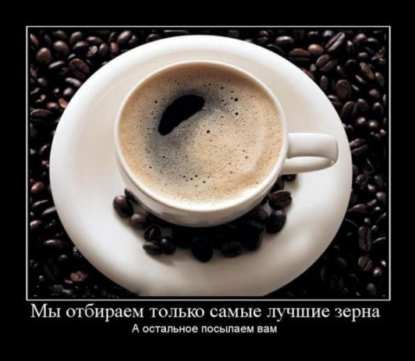 http://s3.uploads.ru/V1iO4.jpg