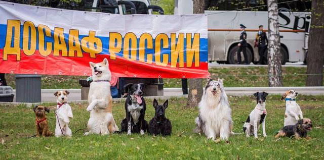 http://s3.uploads.ru/XZDPy.jpg