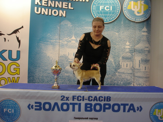 http://s3.uploads.ru/ZYG2h.jpg