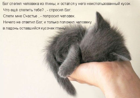 http://s3.uploads.ru/hWwi8.jpg