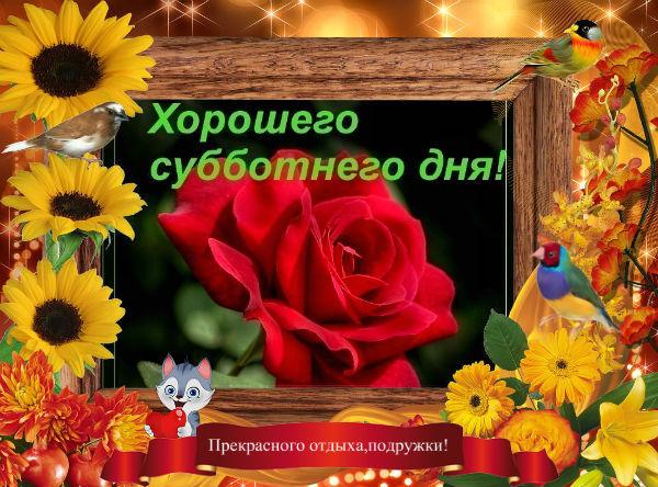 http://s3.uploads.ru/i/CyuYq.jpg