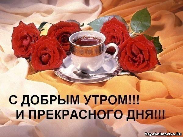 http://s3.uploads.ru/i/HUkCz.jpg