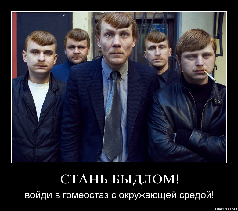 http://s3.uploads.ru/jKF3i.jpg
