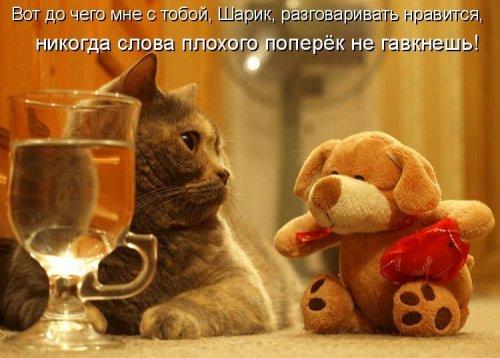 http://s3.uploads.ru/r5dPv.jpg