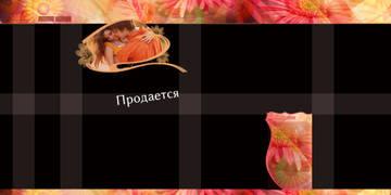 http://s3.uploads.ru/t/0uVrC.jpg