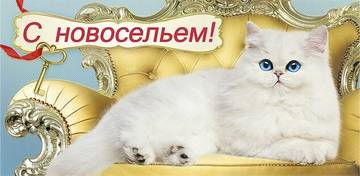 http://s3.uploads.ru/t/4ilcD.jpg