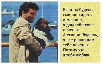 http://s3.uploads.ru/t/6FarL.jpg