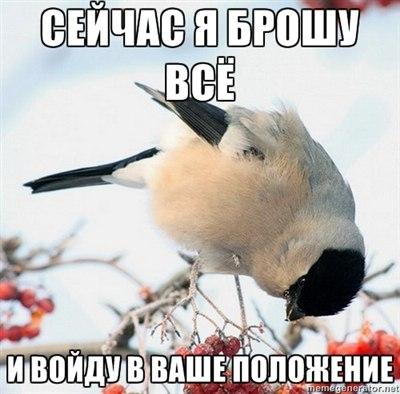 http://s3.uploads.ru/t/8meW6.jpg