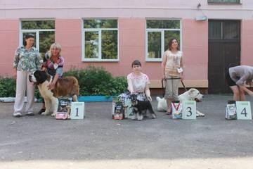 http://s3.uploads.ru/t/95ifh.jpg