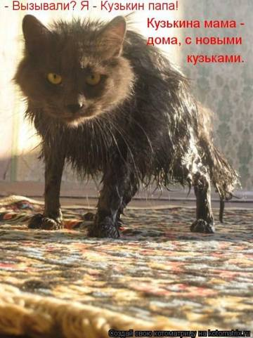 http://s3.uploads.ru/t/9XDRv.jpg